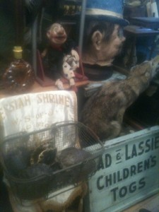 Obscura: Antiques and Oddities